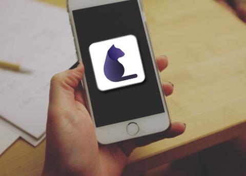 P.Cat 是目前 iOS 平台上最厉害的全能抓图猫,图片视频都能抓!