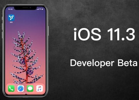 iOS11.3 Beta2发布:降频开关终于来了!
