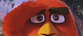 《愤怒的小鸟》电影首周登顶 20号来华上映