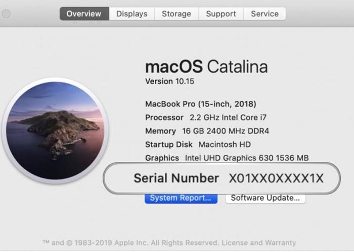 苹果计划从2020年末起,为未来苹果产品使用随机序列号