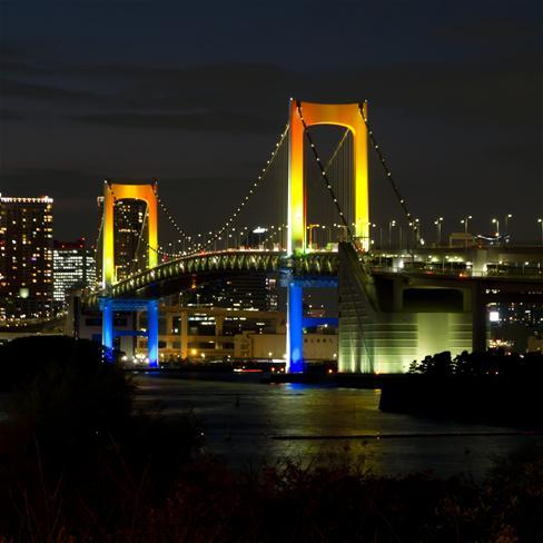 城市,高楼,大厦,灯光,夜景,桥,风景,黑色