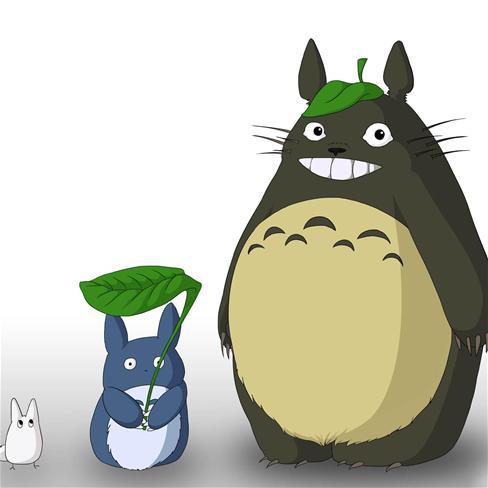 龙猫,萌,可爱,宫崎骏,卡通,彩色