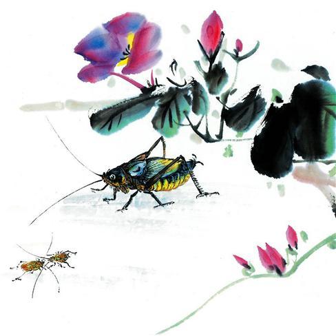国画,手绘,艺术,蟋蟀,其他,白色
