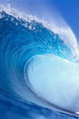 ,大海,海浪,