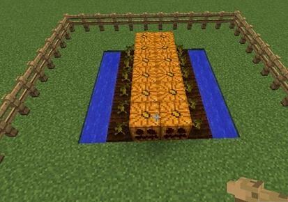 《我的世界》南瓜种植及用法图文详细介绍.jpg